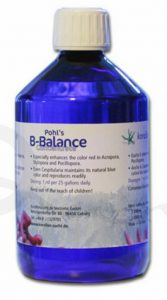 KZ-Pohls-B-Balance-1000_9