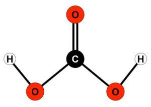 Molecula Acido Carbonico